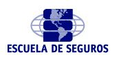 <p><strong>Escuela de Seguros</strong></p>